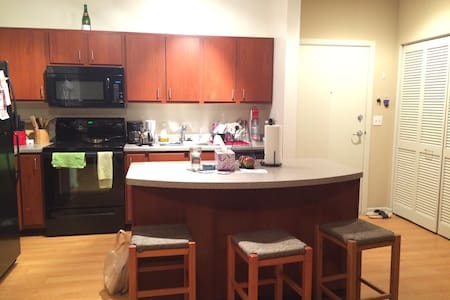 1 BR in the heart of Downtown MPLS!