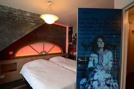 kamers ingericht door kunstenaars - Sorház