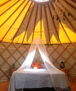 Yurt with amazing sunset by Douro River - Bed & Breakfast