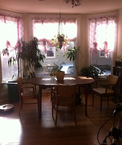 Sunny Room in Charming House - Ypsilanti - Apartment