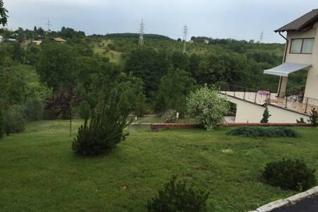 Charming villa in Valenii de Munte - Vălenii de Munte - Villa
