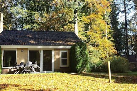 Vakantie bungalow, Veluwe, bossen - Bungalow