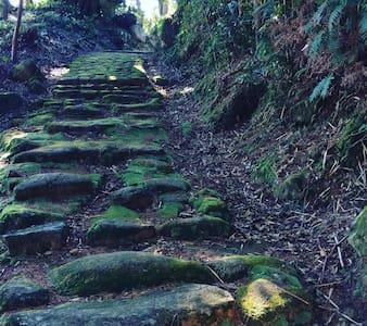 JUST ON the KUMANOKODO Iseji World Heritage - Kumano