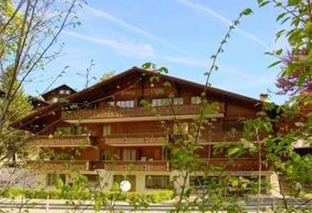 Cozy apartment with parking in Gstaad - Saanen