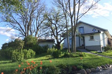 Hagehytte i idylliske omgivelser - Cottage