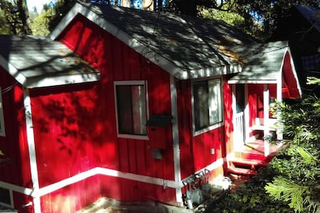 Charming Cottage among the Pines - Crestline
