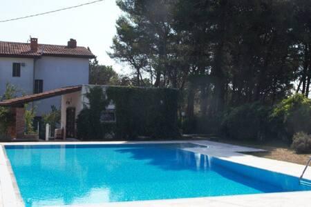 Villa con piscina - Martina Franca - Martina Franca - Villa