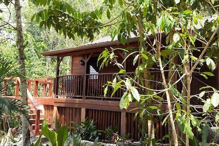 Treetops Guest House - Benque Viejo Del Carmen - Casa