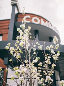 The Commercial Boutique Hotel - Tenterfield - Wikt i opierunek
