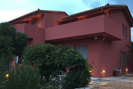 House - Estate - Olive Grove - Island Evia - Παλιούρας