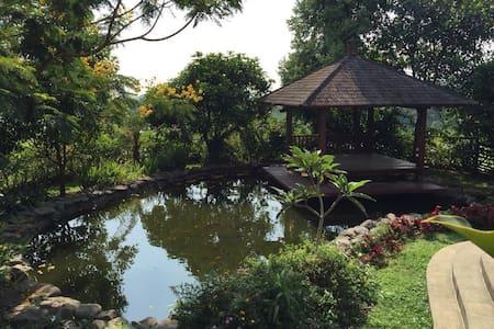 The Pitaya farm/villa - Haus
