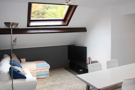Appartement entièrement rénové mansardé - Chaudfontaine - Leilighet