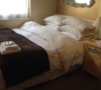 Spacious, Nice, private room in a  sunny  flat. - London - Apartment
