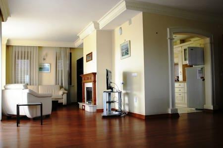 Villa Bursa - Villa