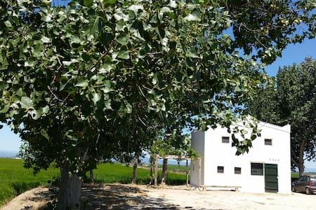 Casa Cusa, Ebro Delta