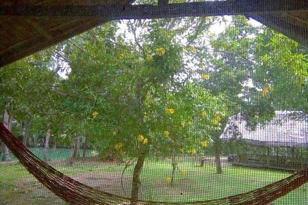Dorm Bed at Nipa Huts Village Bohol - Hut