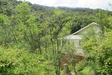 Bush House, Cobden - Casa