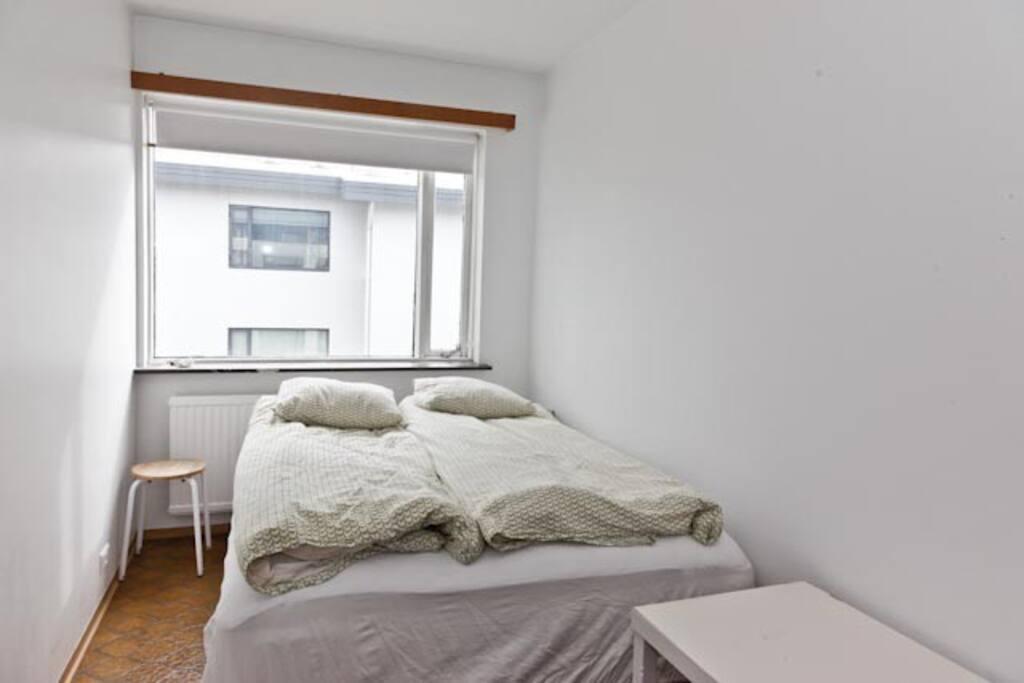 4 bedroom apartment in Reykjavik