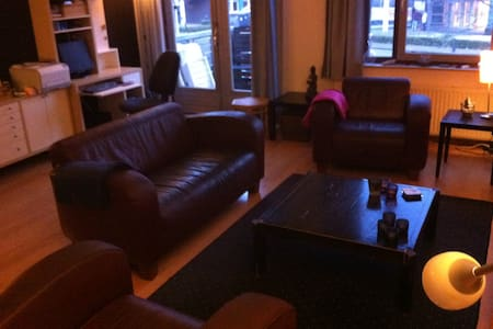 Cozy apartement in Apeldoorn - Apeldoorn - Apartment