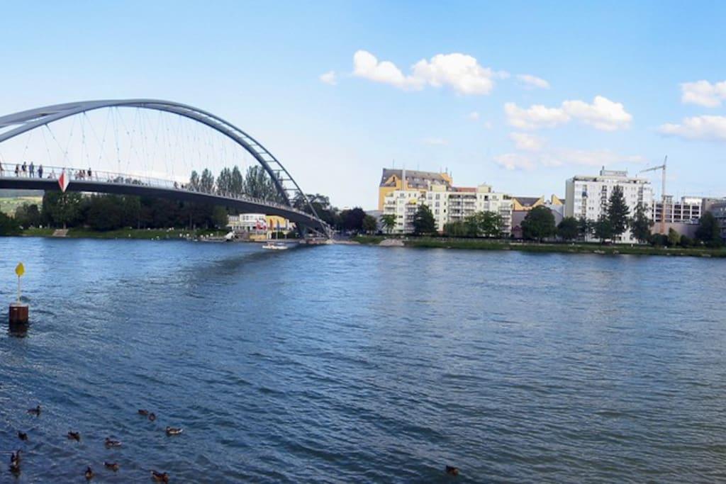 Pedestrian bridge connecting the 3 countries (D/F/CH) - 3 min walk