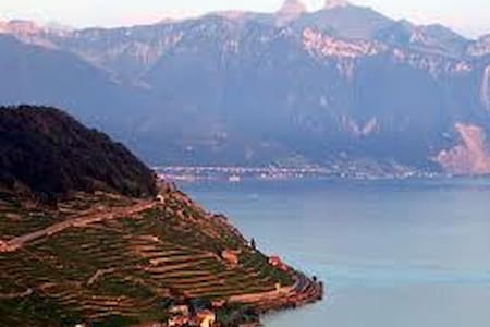 Lavaux - Big flat with view & terrace - House