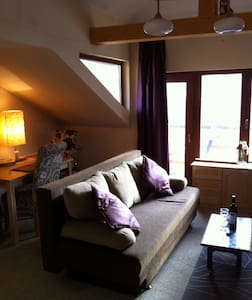 2 cosy ski aparts nr airp /sleep 8 - Apartment