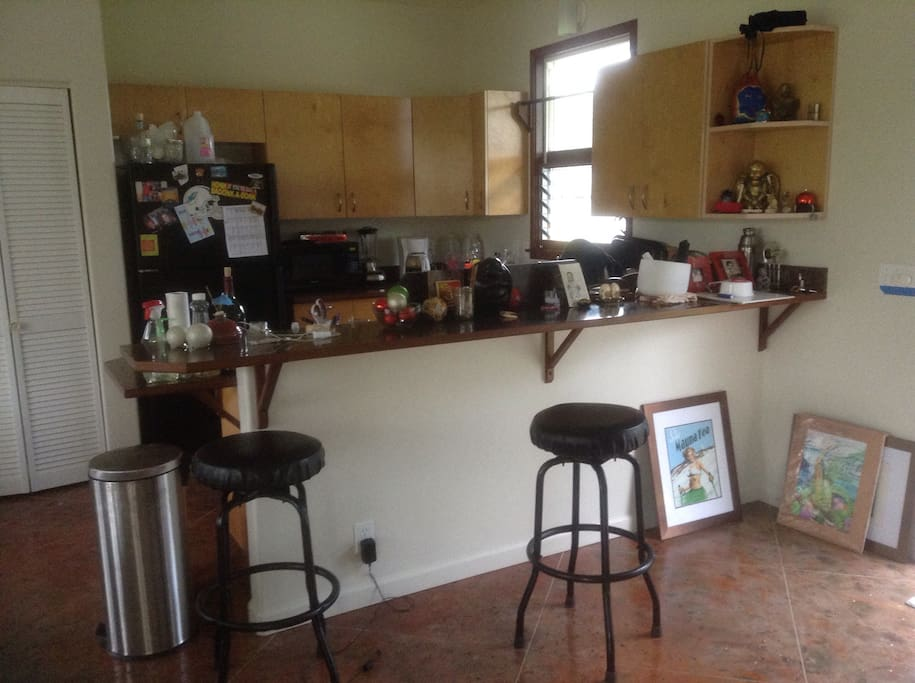 Full kitchen with double sink, fridge, stove, microwave, blender, food processor