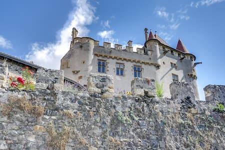 Château de Saint-Amant - Kasteel