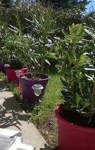 T2 50 m2 +Jardin dans un cadre apaisant - Soucieu-en-Jarrest - Apartament