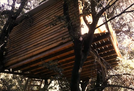 Tree House Barcelona - Molins de Rei - Bed & Breakfast