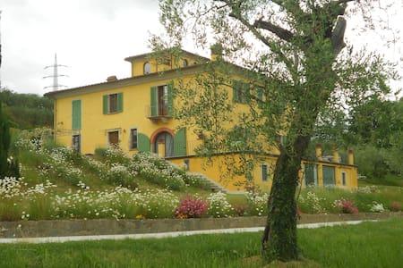 CAMPANO LUXURY FARMHOUSE IN COLLODI WITH JACUZZI - Collodi