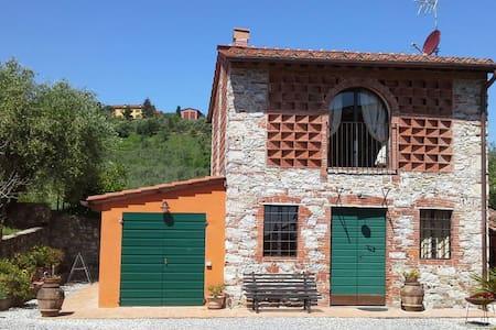 LE CIVETTE - Lucca