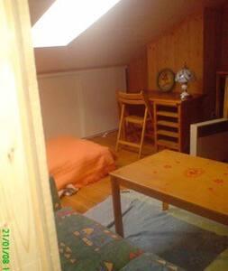 Petit studio en sous pente - Haus