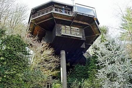 Saul Zaik  Treehouse! - House