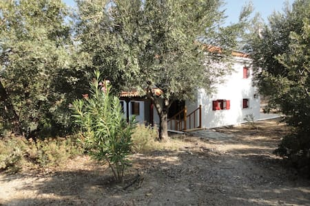 The oleander house on the hill. - Ερεσός - House