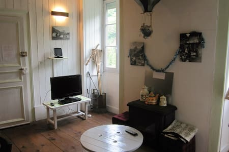 Appartement de charme à la montagne - Eaux-Bonnes - Apartemen