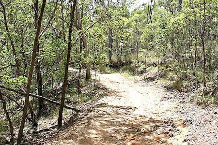Large dble bush setting - Seven Hills - Hus