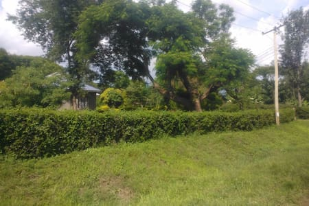 Set around coffee farms at the base of Mount Meru, we are very close to town, ideally close to the Arusha airport and Dodoma road for easy access to all parks and beach destinations. very suitable for tourist,students  Cold Drinks & Foods 24/7
