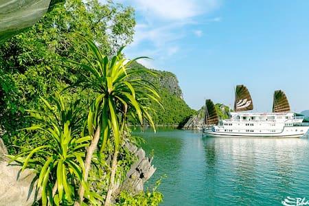 Bhaya Classic 2D1N Halong Cruises