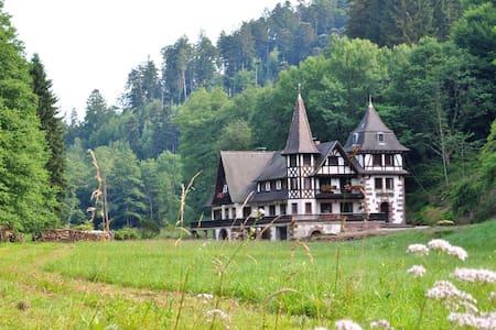 Le Saint moulin de La Petite Pierre - Rumah