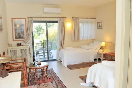 Standard Room with a balcony - Rosh Pinna