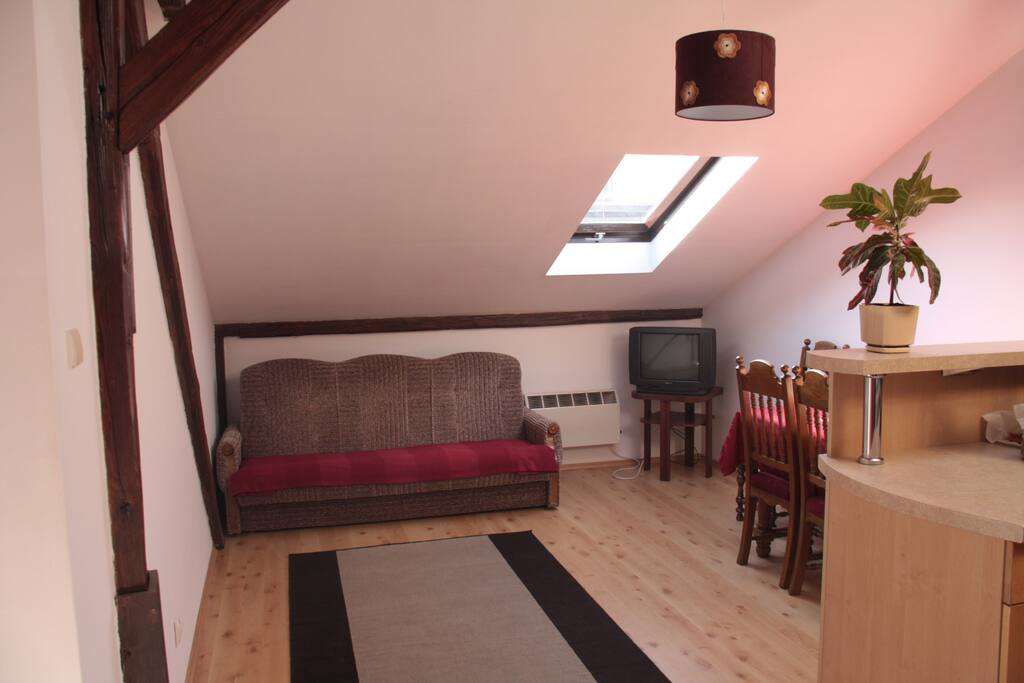 Apartment in Cracow - city center!