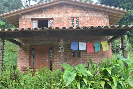 Chalets in the misty forest  - Coatepec