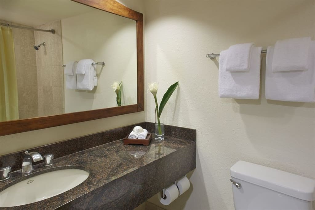 Luxury studio luana waikiki 414 apartments for rent in for Best boutique hotel bathrooms