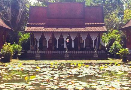 Bua Luang - Tambon Chedi Luang