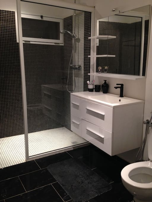 Douche italienne et wc. Italian shower with wc.