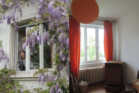 Le charme du vieux Dornach - Mulhouse - Dům