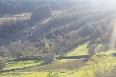 Piece of Wicklow Heaven - Glendalough