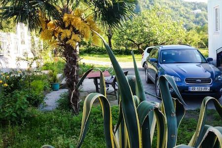 Gonio Guest House - Batumi - Wikt i opierunek