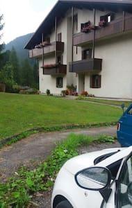 Appartamento in montagna (Dolomiti) - Apartment